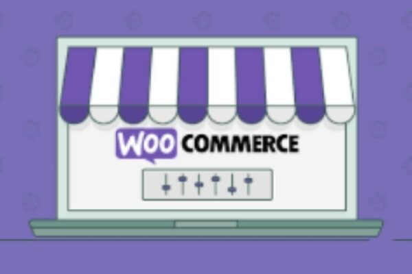 Everything You Need To Know About WooCommerce-The Most Popular Ecommerce Environment