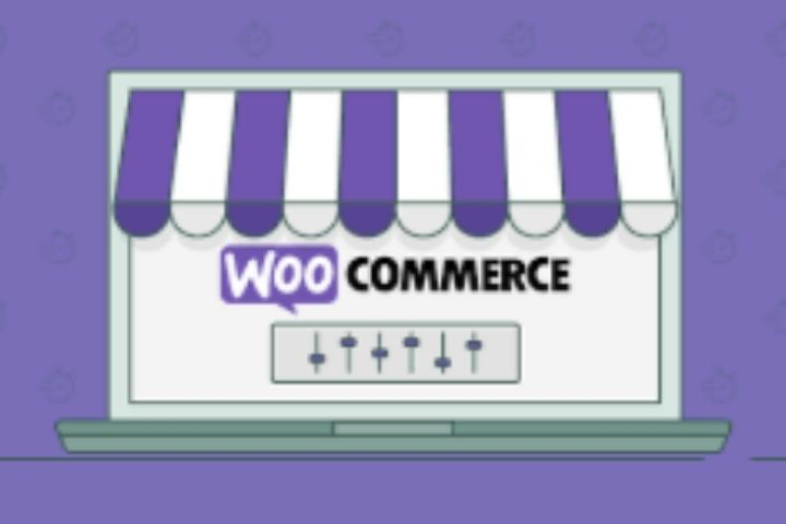Everything You Need To Know About WooCommerce-The Most Popular