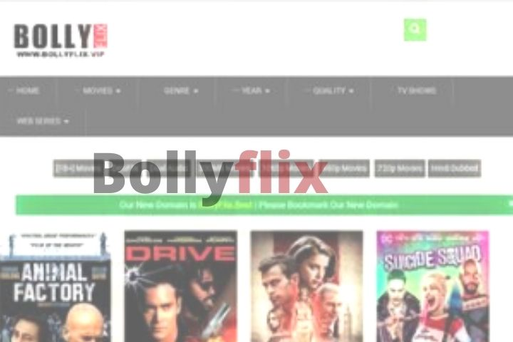 Bollyflix (2021) - #1 Platform To Download Latest Bollywood Movies